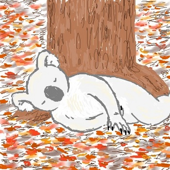 snsコアラと落ち葉の上.jpg