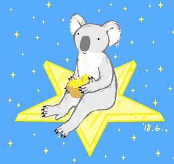 snsコアラと星.jpg