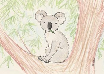 snsコアラと木の上5.jpg