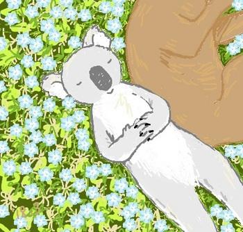 snsコアラと水色のお花.jpg