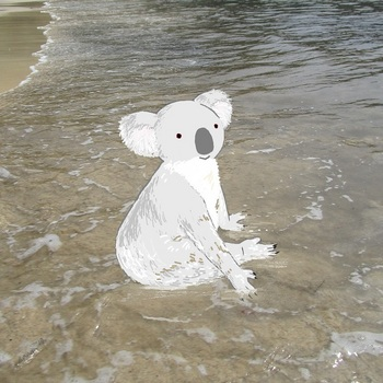 snsコアラと浜辺2.jpg
