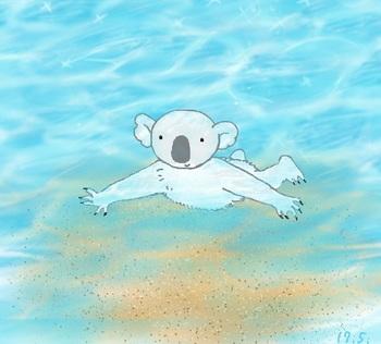 snsコアラと海.jpg