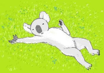 snsコアラと芝生.jpg