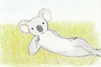 snsコアラと草の上.jpg