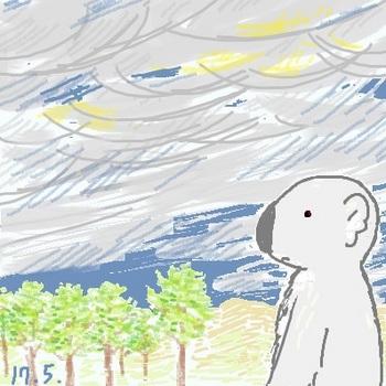 snsコアラと雷雲.jpg