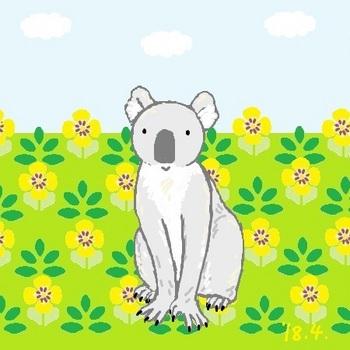snsコアラと黄色いお花2.jpg